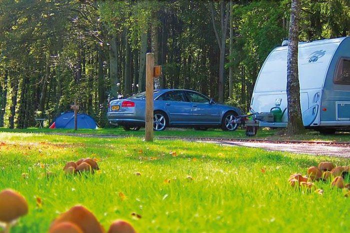 Camping Martbusch Luxemburg